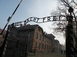 アウシュヴィッツ・ビルケナウ-ナチス・ドイツの強制絶滅収容所(1940-1945)-