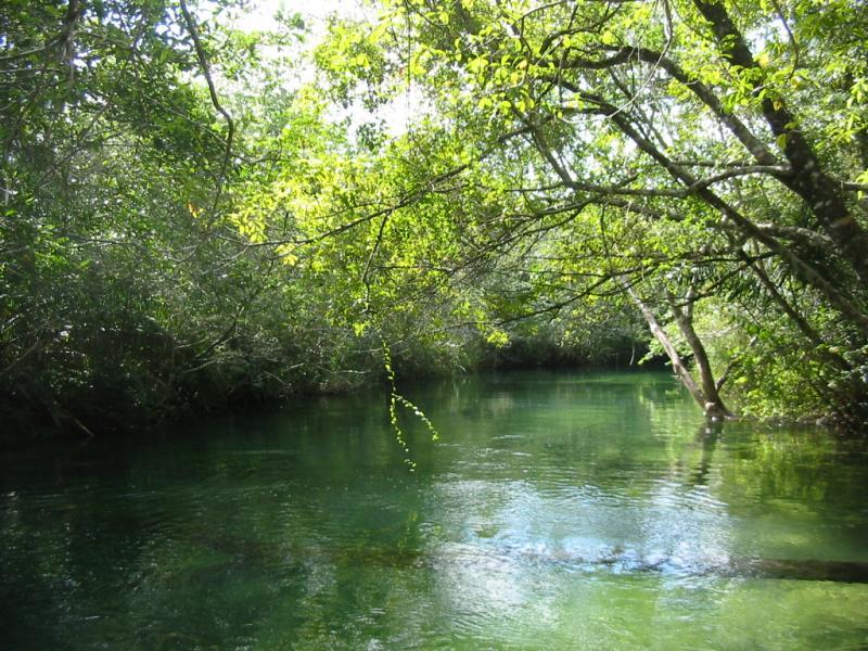 ボニート周辺の川