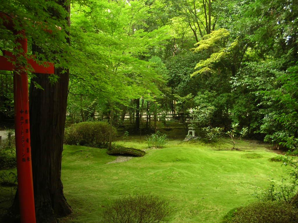 京都 嵯峨野