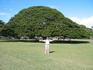 Us14 ハワイ ∞ オアフ島・モアナルア・ガーデンズパーク