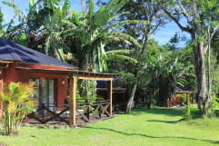Hotel La Mision Lodge de la Selva