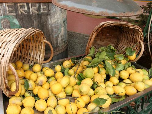 <初夏>チンクエテッレのレモン祭り